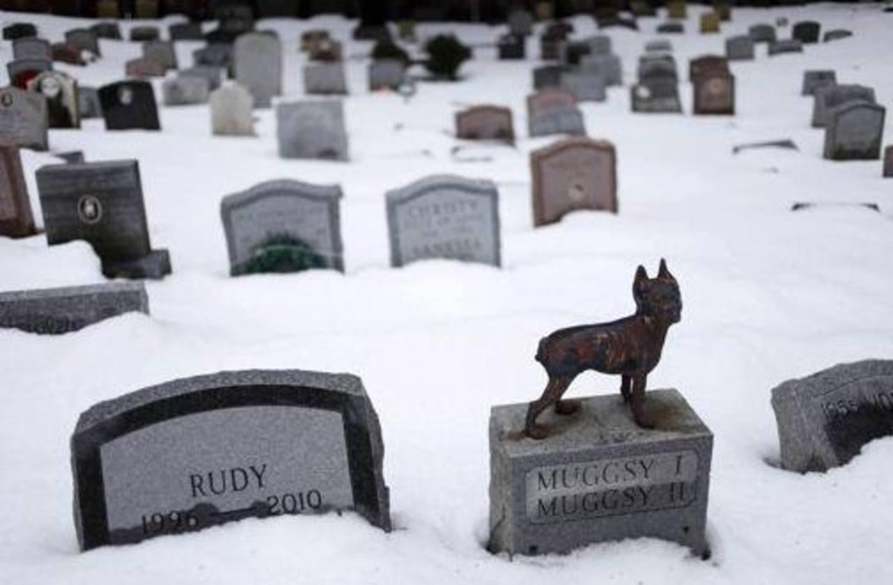 El Cementerio de Mascotas de Hartsdale, Nueva York. Foto/ AP
