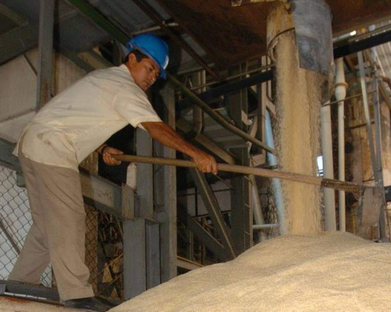 El sector azucarero salvadoreño es uno de los que ha pedido quedarse fuera del TLC con Perú. Foto EDH / archivo