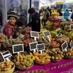 El Perú le cocina al mundo