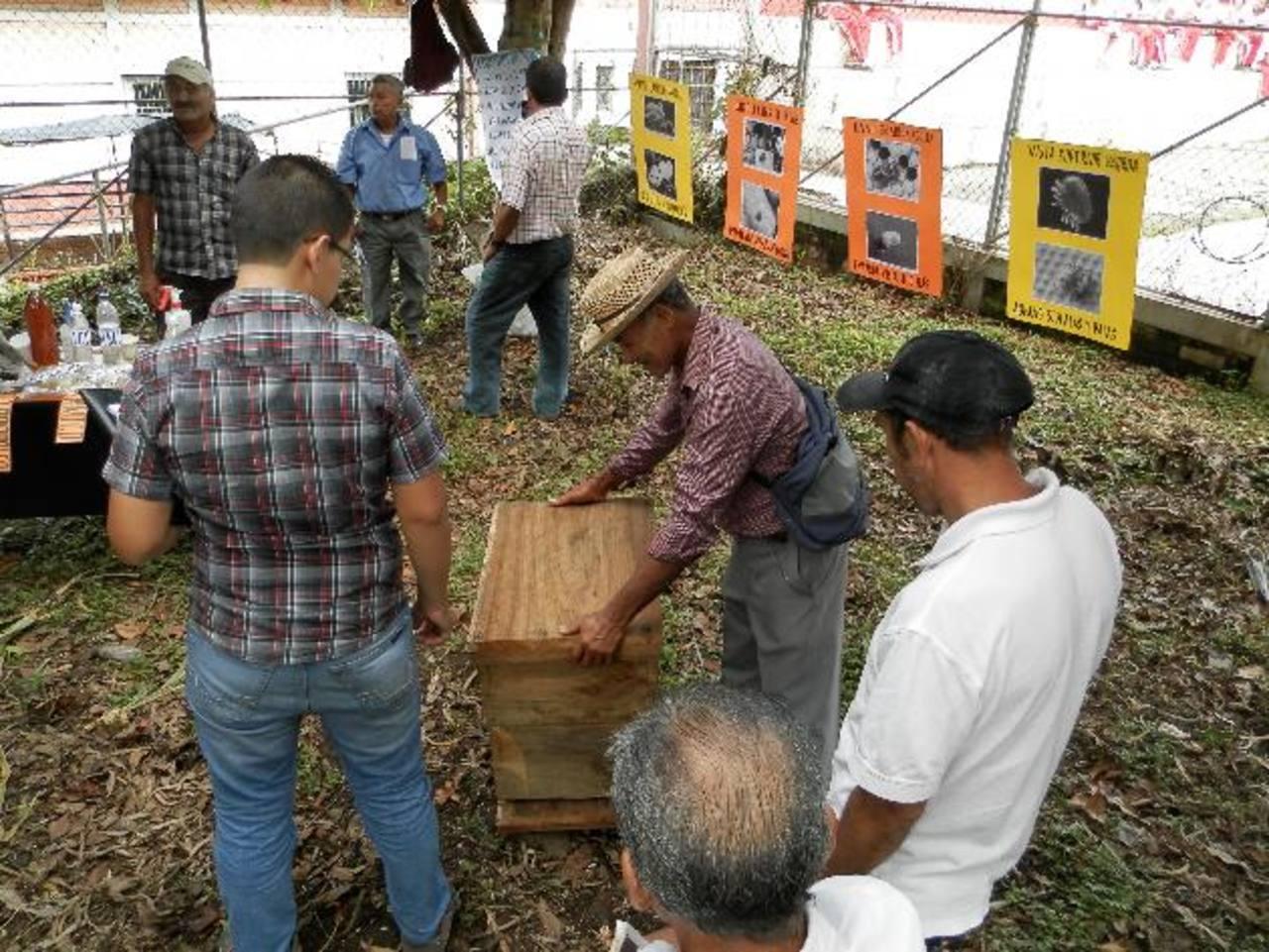 Los participantes recibieron capacitación de nuevas técnicas de producción de miel de abeja. Foto EDH / Milton Jaco