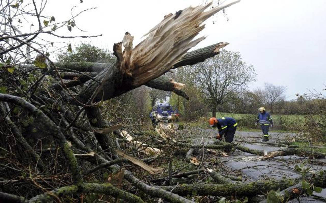 Algunos de los daños de las tormentas. Foto EDH /EFE