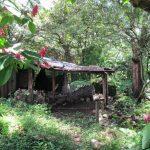 Esta es la casa en que vivía la familia Guevara Pocasangre. Era la última del caserío La China. Hoy solo se escucha a lo lejos el murmullo de un río. Si cuando estaba habitada ya lucía en malas condiciones, ahora está peor.