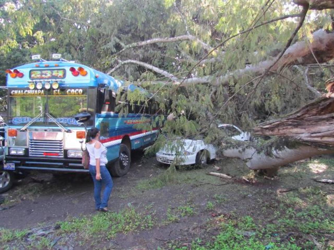 La Policía aseguró que aunque no han cuantificado los daños, algunos vehículos no fueron tan afectados porque solo les cayeron ramas encima.Esperan terminar los trabajos en cuatro días.Uno de los problemas que han enfrentado los empleados de la alcal