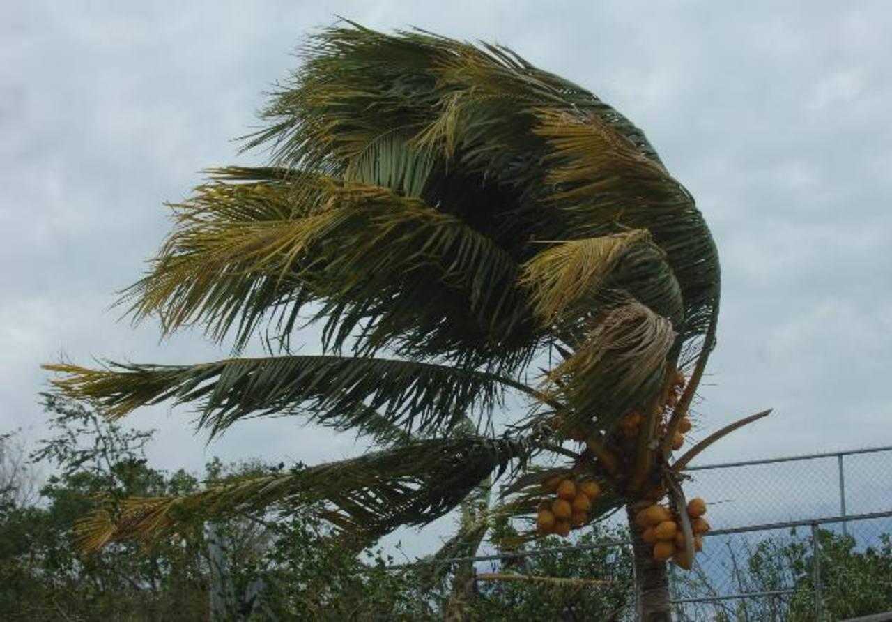 """Al menos dos periodos de vientos """"nortes"""" afectarán a El Salvador a finales de este mes, según MARN. Foto/ Archivo"""
