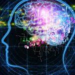 El cerebro disfruta con el sufrimiento ajeno