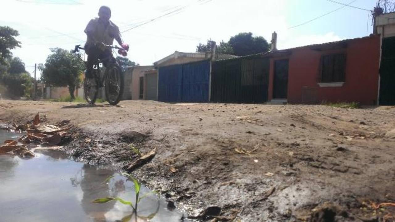 La calle es de tierra y no ha recibido mantenimiento de la alcaldía. foto edh / milton jaco