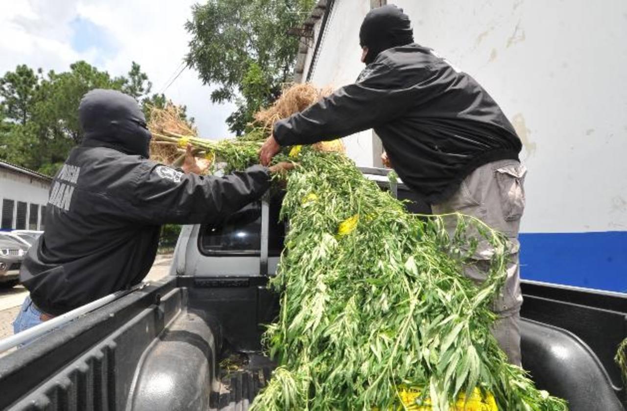 Los decomisos y las capturas no bastan para combatir la drogadicción, aseguran los expertos. FOTO/ARCHIVO