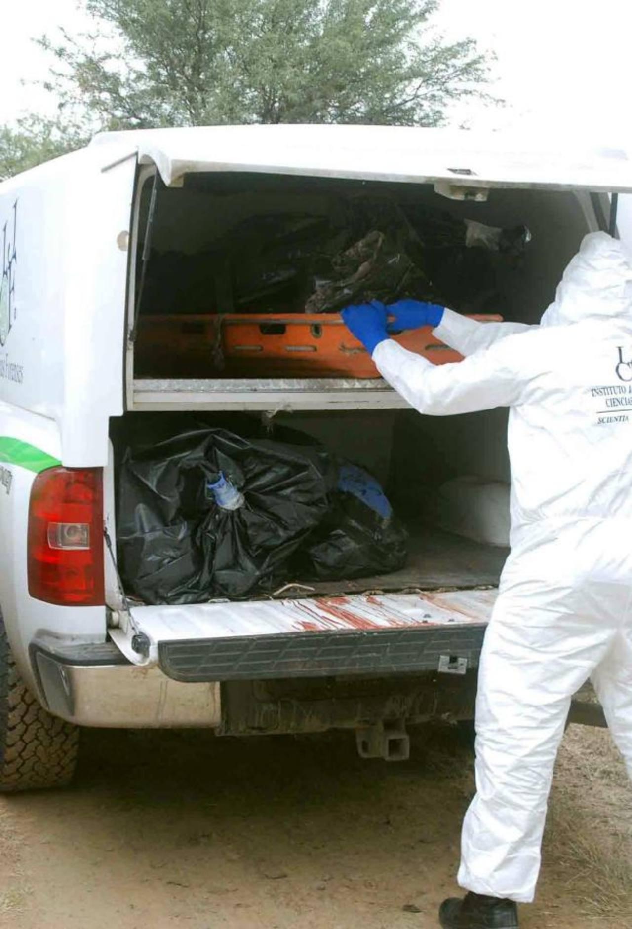 Un forense acomoda bolsas con los cuerpos.