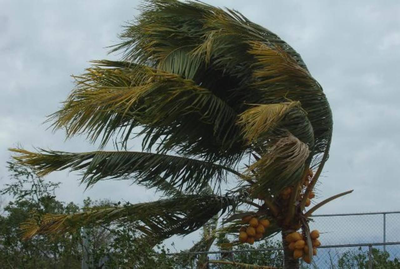 Las ráfagas de vientos podrían percibirse de 40 kilómetros por hora en el territorio salvadoreño. foto edh / ARCHIVO