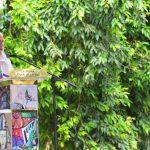 Fernando Llort en el Parque Central de La Palma, Chalatenango. El artista dio las gracias por haber creído en él. fotos EDH / omar carbonero
