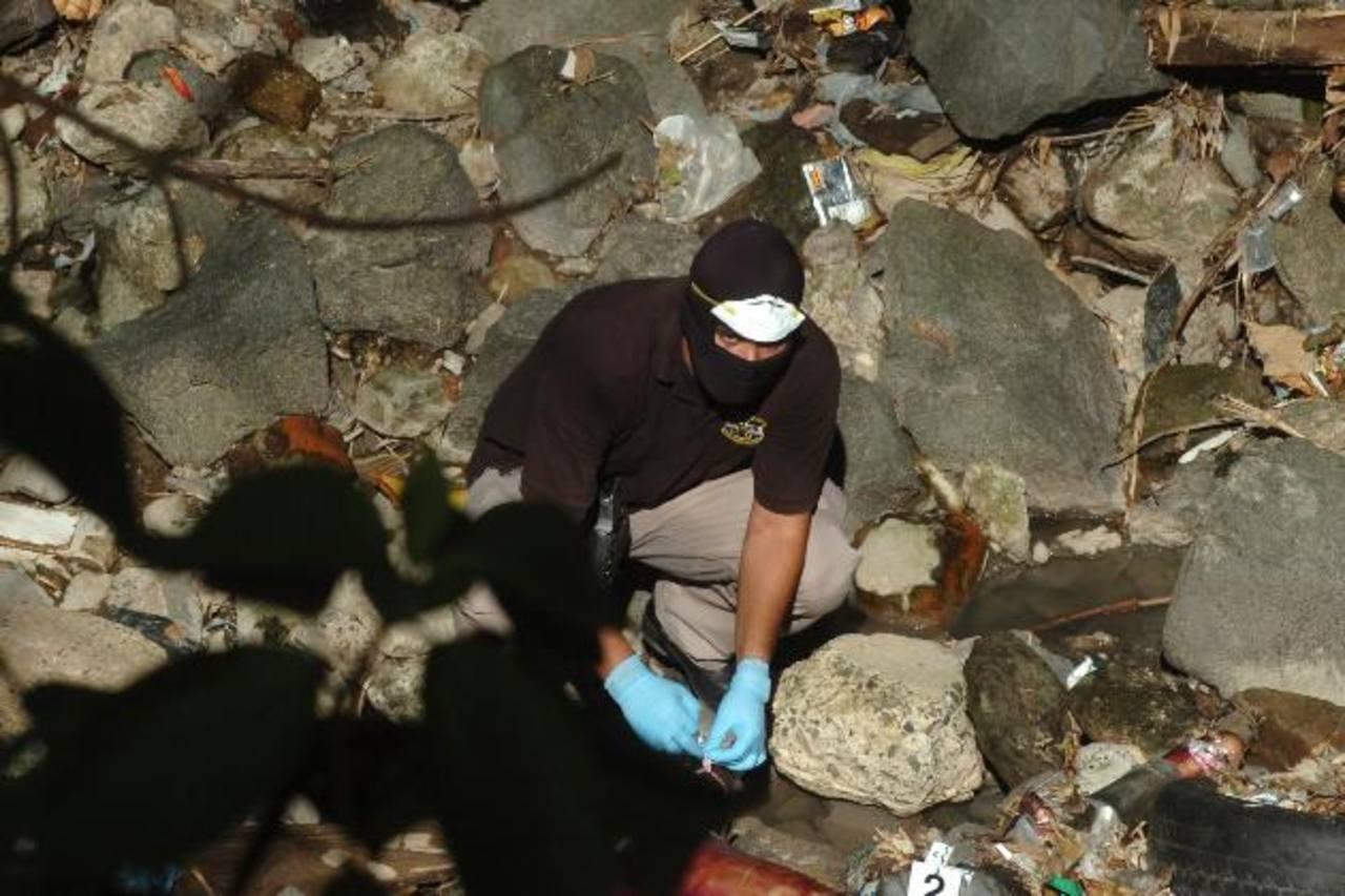 La PNC recoge evidencias donde hallaron dos cuerpos mutilados. Foto EDH / Éricka Chávez
