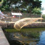 Buscan hacer del bachillerato en acuicultura algo auto sostenible a través de la venta de las especies que producen en los diversos estanques. Fotos EDH / insy mendoza