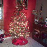 Así decoran los salvadoreños sus hogares para Navidad