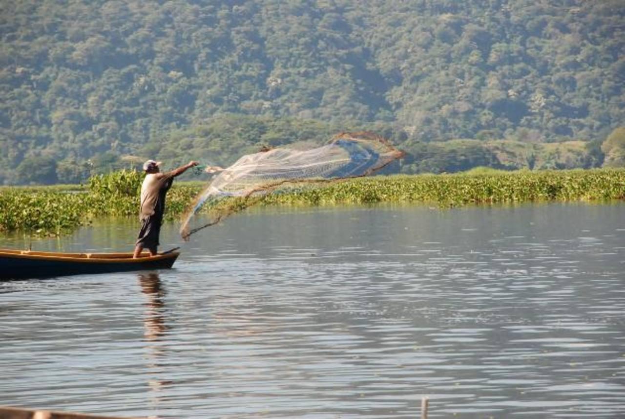 Los pescadores aseguran que hay compañeros que irrespetan la prohibición de pescar con ciertos tipos de redes y que eso afecta el crecimiento y proliferación de los peces.