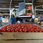 Algunas frutas y verduras han subido de precio debido al cierre que mantienen transportistas de carga internacional en las fronteras del país. Foto EDH/ Marvin Recinos