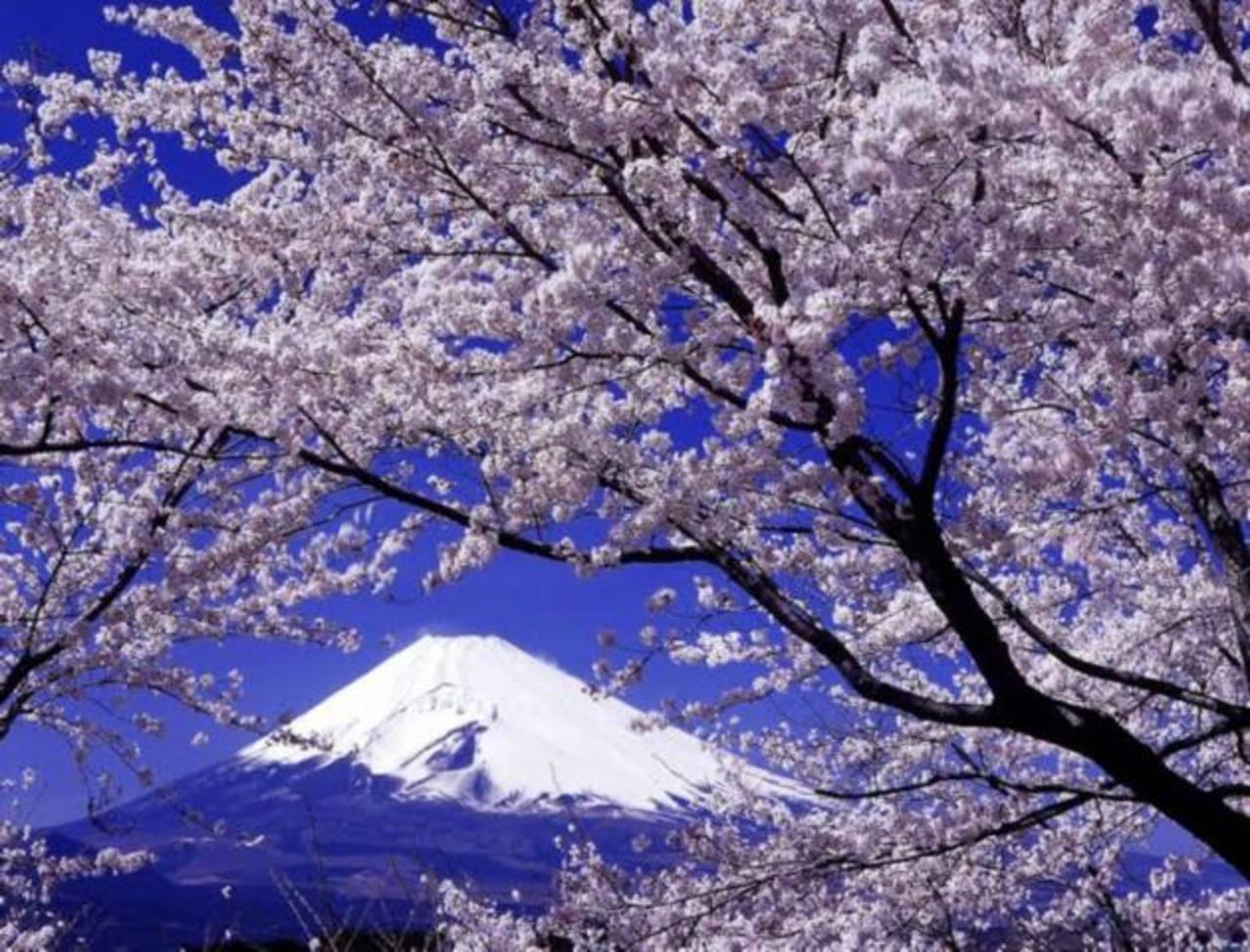 Hermosos paisajes forman parte de la propuesta.