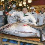 Fotos: Japonés compra 507 libras de atún a casi $70 mil