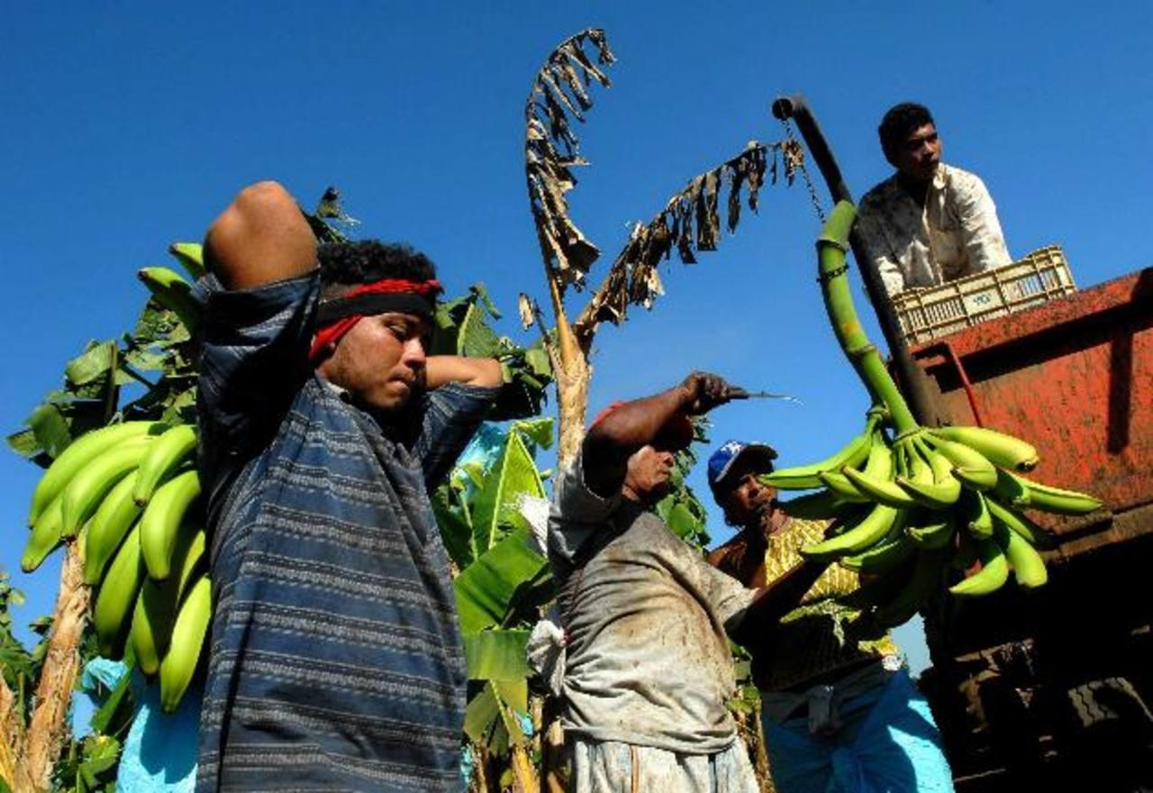 Pocos serán los futuros jubilados que lograrán pensiones de calidad en el país centroamericano. FOTO EDH /archivo