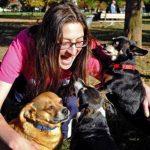 Cambria Hankin habla con sus tres perros chihuahua, de izquierda a derecha, Buddy, Riah y Stitch. Los trata como a sus hijos y no tiene duda que entienden lo que les dice. Foto/ AP