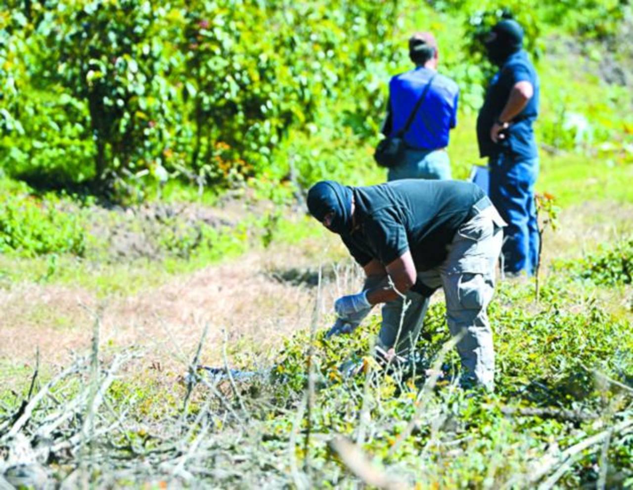 Investigadores realizan el reconocimiento de dos agricultores asesinados en Jayaque, La Libertad. Foto EDH / Jaime Anaya