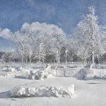 Frío en EE. UU. causa 21 muertos y $5 mil millones en pérdidas