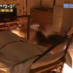 VIDEO: Hacen volar su cama mientras duerme