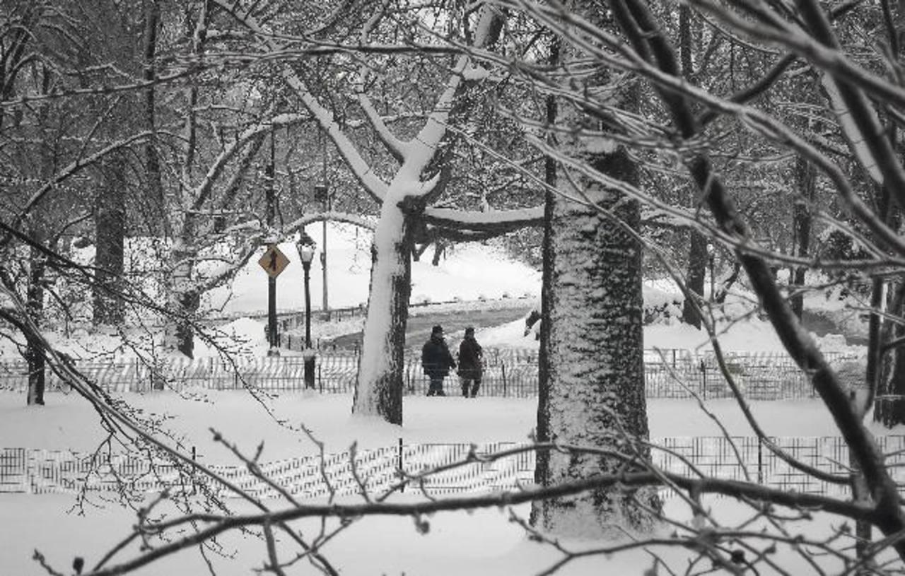 Imagen del Central Park, en Nueva York.
