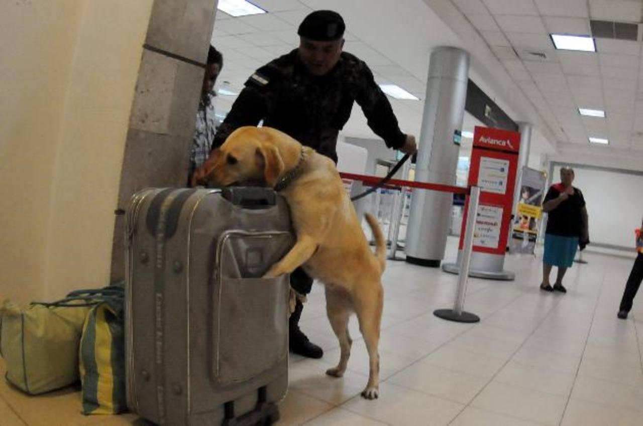 Militares hondureños revisan maletas en las instalaciones del aeropuerto internacional de Toncontín. foto EDH / efe