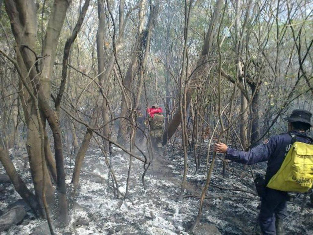 Incendios forestales siguen en aumento en el departamento unionense, según Bomberos. Esto creen se debe a que nadie investiga y sanciona. fotos edh / archivo.