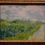 Campo de trigo verde, la novedad del Smithsonian.