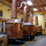 La producción de tequila es clave en México.