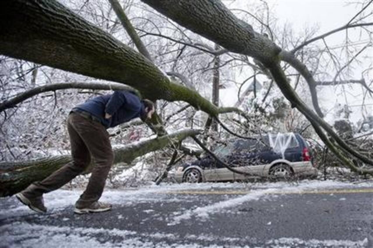 La imagen muestra un auto dañado por un árbol.