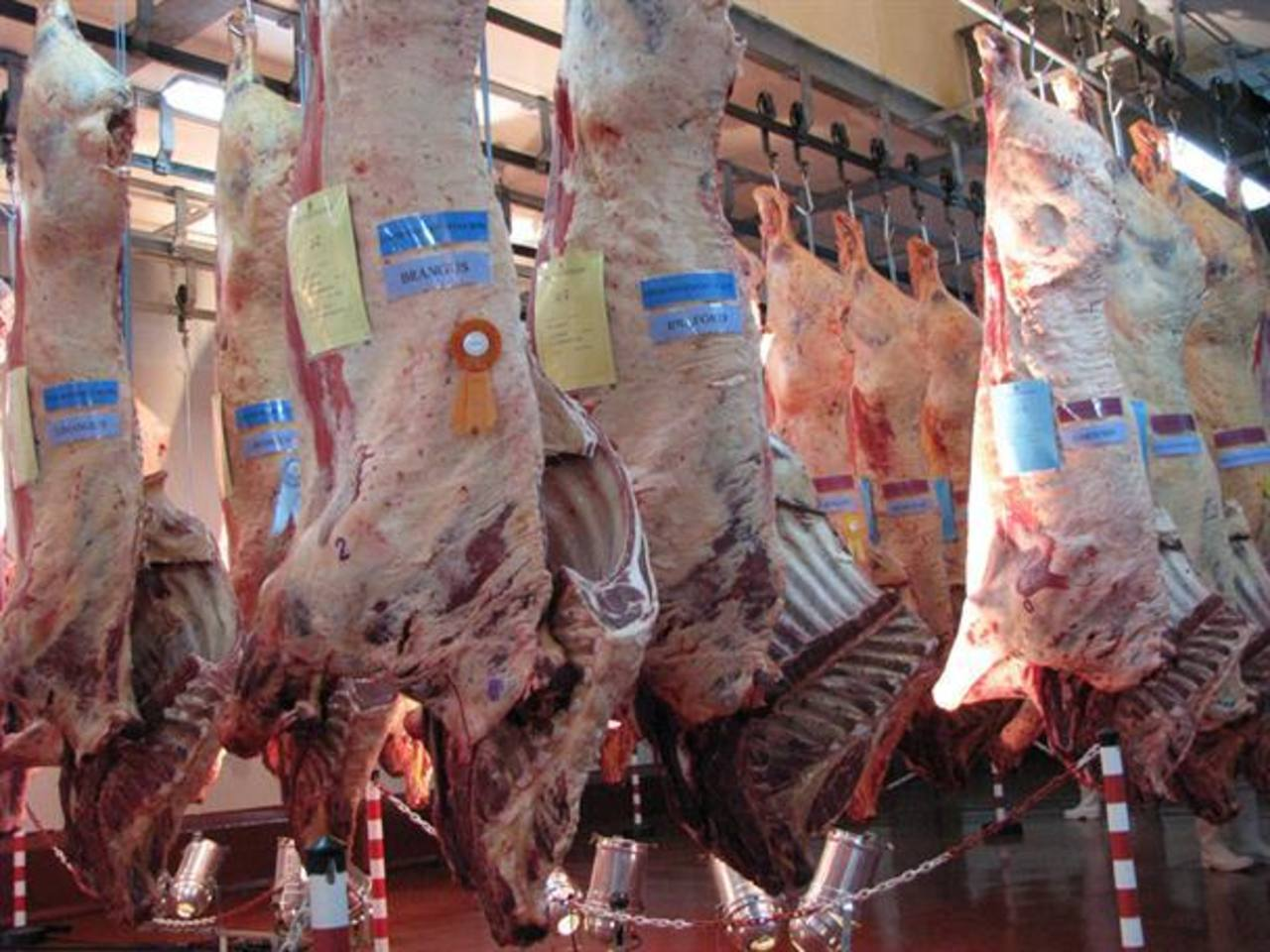 Las exportaciones argentinas de carne bovina, que están restringidas por el Gobierno, cayeron un 22.7 por ciento interanual a 8,416 toneladas
