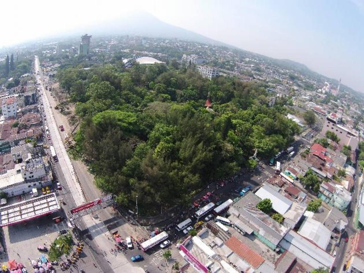 Según reportes de Secultura se talarán cerca de 140 árboles. Foto EDH / Evelyn linares