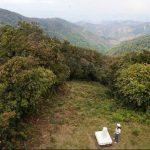 Los dos turistas que se encontraban perdidos en el Parque Nacional Montecristo fueron rescatados. Su condición de salud era estable, según Bomberos. Foto/ Archivo