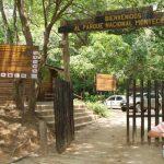 Autoridades realizaban la búsqueda de dos turistas que se extraviaron el domingo en un sector del Parque Nacional Montecristo. Foto/ Archivo