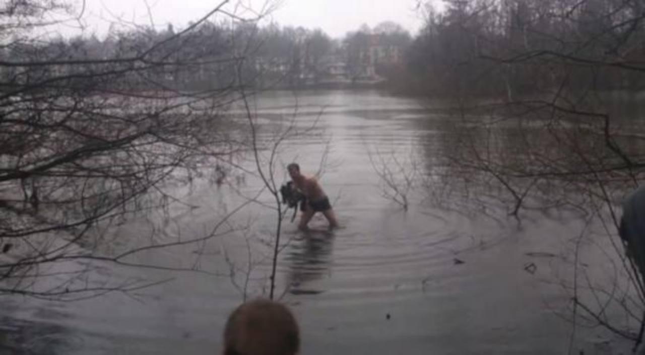 Video: Rescata ganso y se convierte en héroe