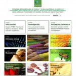 Este programa iberoamericano es un programa intergubernamental de cooperación multilateral en ciencia y tecnología.