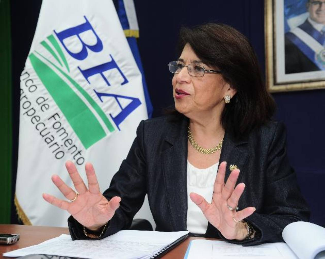 La presidenta del BFA, Mercedes de López, destacó el impulso que se da al sector productivo. FOTO EDH / R. QUINTANILLA