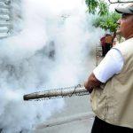 Al fumigar las viviendas mueren los zancudos adultos, pero las personas deben eliminar los criaderos. Foto EDH / archivo