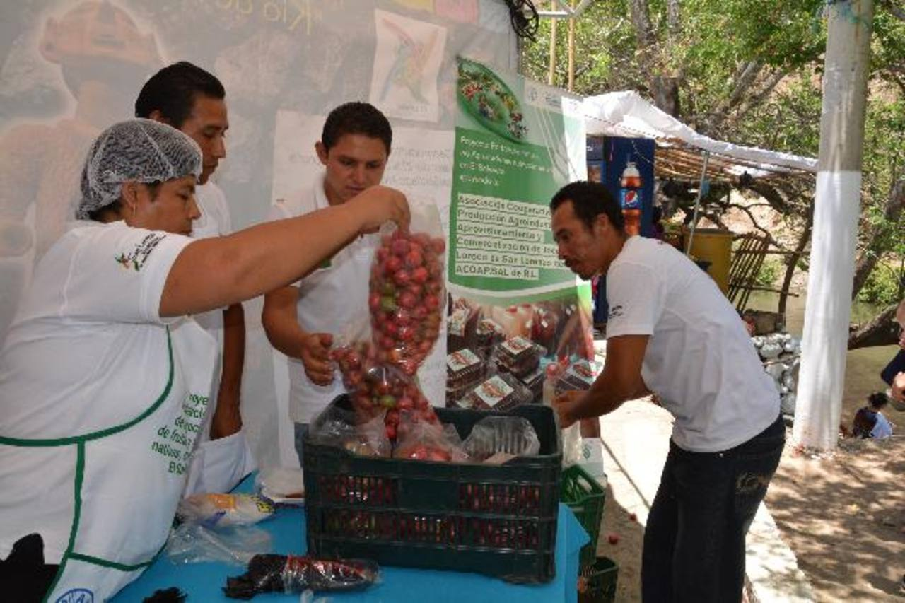 """Allan González, de la FAO, dijo que Acopajsal tiene una certificación de """"Campo Limpio"""", lo que significa que cultivan el jocote bajo normas ambientales. Fotos EDH / cristian Díaz"""