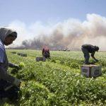 El mal clima en Estados Unidos paralizó labores de miles de personas en febrero. EDH/ ARCHIVO