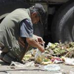 Toneladas de alimentos acaban en la basura o se echan a perder de camino al mercado. foto EDH