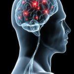 El estudio concluye que los pacientes presentaron una mejor funcionalidad cognitiva tras la rehabilitación.