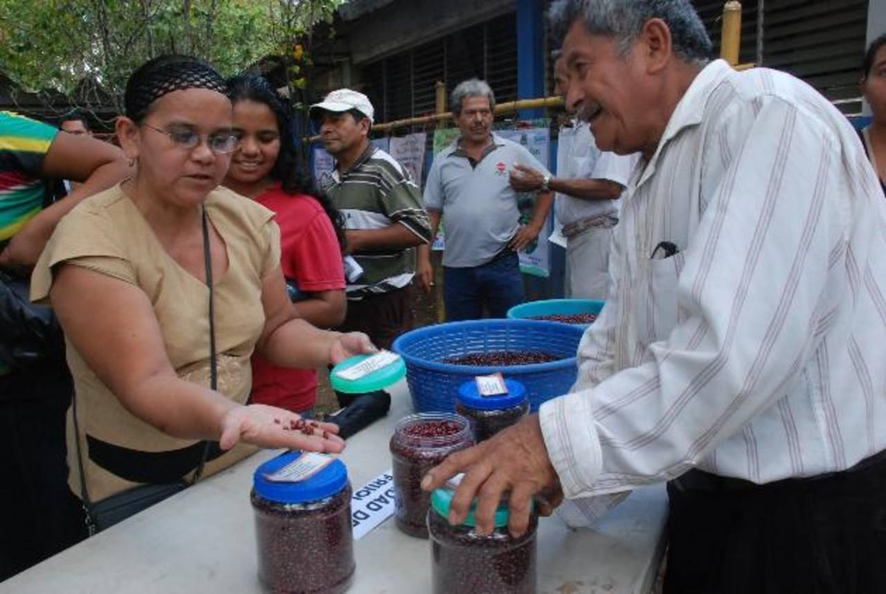 Los agricultores asesorados por Centa mostraron sus cosechas. Foto EDH/ Lucinda Quintanilla