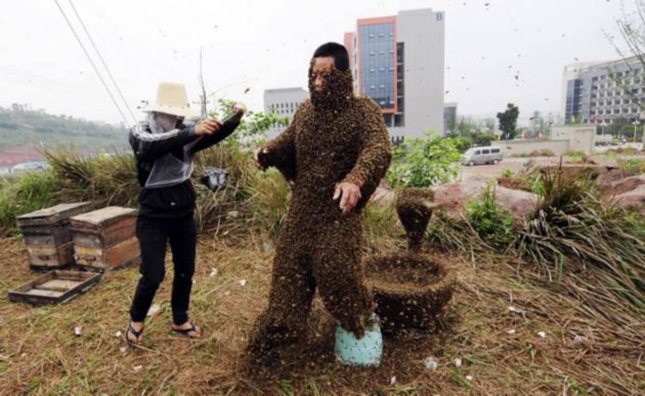 Fotos: Chino se cubre con medio millón de abejas