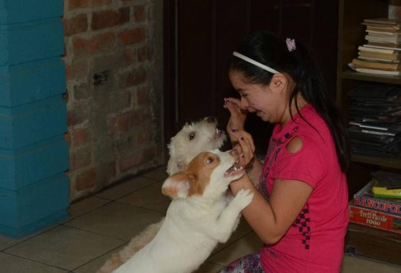 Ruth es recibida en casa por dos de sus mascotas. Ahí, ella es más extrovertida e inquieta que en clases.