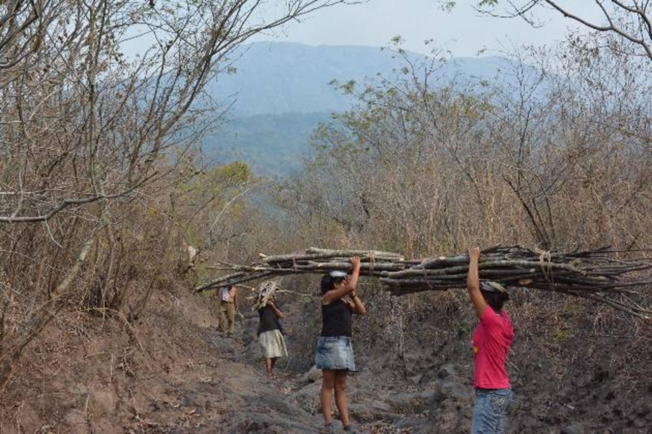 Ayer un grupo de expertos de Japón y el Ministerio de Obras públicas (MOP) visitaron la zona por donde bajan los flujos de roca del Chaparrastique. Foto edh / Carlos Segovia