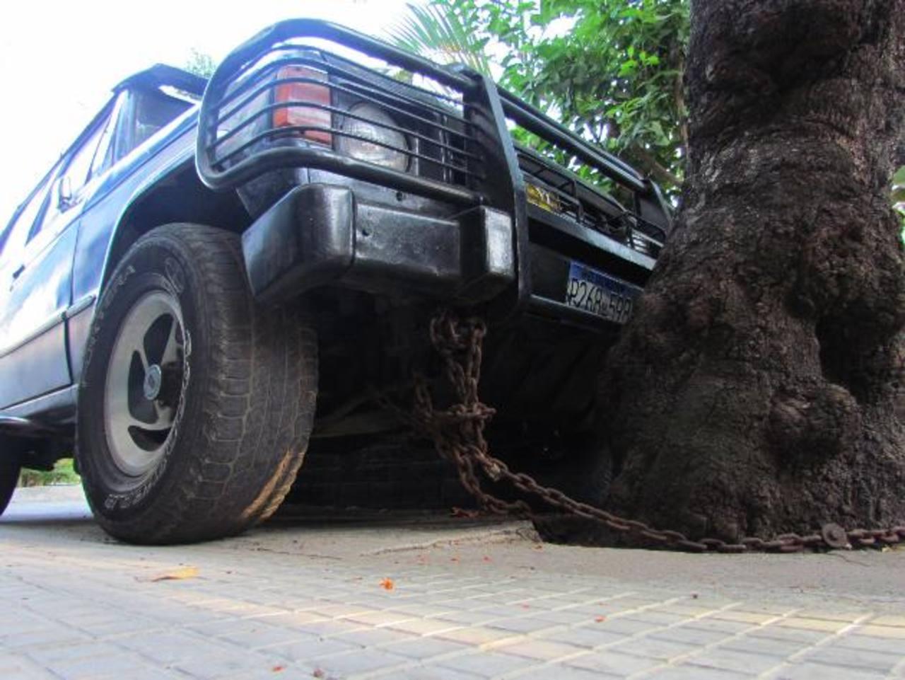Los residentes del barrio San Rafael, en Santa Ana, han encontrado una forma peculiar de cuidar sus autos para evitar los hurtos. Foto EDH / Mauricio Guevara