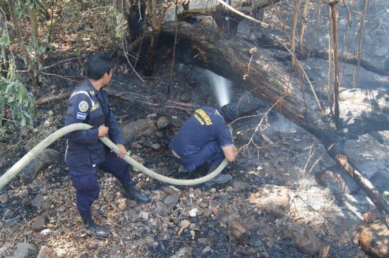 El jueves el Cuerpo de Bomberos extinguió un incendio en una de las orillas del parque Deininger. Foto EDH/Cortesía Bomberos